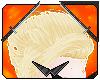 Strider | Hair V1
