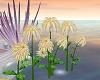 LIA - Dahlias flower