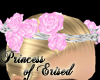 !Poe! Rose Crown Pink S