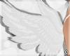 !© Pure Angel Wings