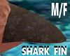 Shark Fin M/F