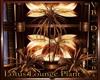 Lotus Gold Plant