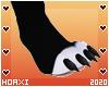 H! Equinox Paws