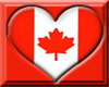 {07}CANADIAN FLIP HAT(F)