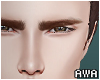Req Eyebrows Brown