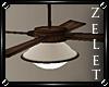 |LZ|Classroom Fan/Light