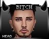 !B  = ORION Head =