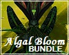 Algal Bloom Bundle