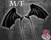 Dragon Wings Black M/F