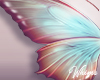 Sec Garden Butterflies