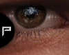 Brown Eyes II