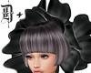 D+. Flower Hat BLK I