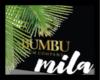MB  BUMBU XO  BOX