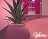 Pink Plant Pot