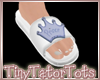 T. Boys Slides Mappable