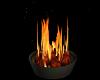 Fire Pot