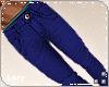 L. M/ Trousers Blue