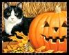 Tuxedo Cat Pumpkin Art