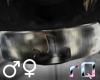 rQ Mount Headband~Neck