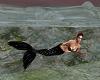 Mermaid Island Decorated