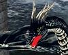 Fenrir Dragon