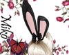 bunnygirl black