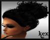 [KEX] Houghton Black