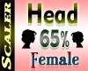 Head Resizer 65%