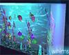 Glow Vibes Fish Aquarium