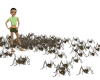 Cricket Spider Particles