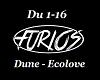 Dune Ecolve
