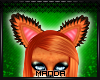 .M. Red Fox Ears 3