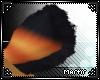 [M] Xem Tail v4