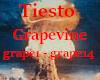 Tiestro - grapevine