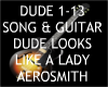 Dude + Guitar ~Aerosmith