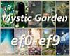 10 Garden Mixed BG's