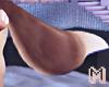 BRODY Medium Wolf Tail