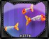 Kitty Got Hungry Fish V2