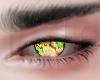 Couple Eyes Mixed v5 M