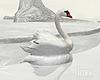 "Iv""Animated Swan"