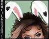 K. Bunny Ears White