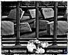 GRAVEYARD WALL/FLOWERS