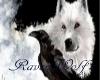RavenWolf Banner
