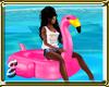 Flamingo Float