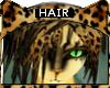 [M] Bengal * Hair V4