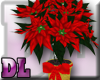 DL: Red Poinsettia