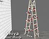 ❤ Ladder & Xmas Lights