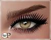 Xyla Eyeliner V2
