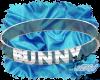Silver Bunny Collar