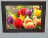 AT - Tulips Photo Frame